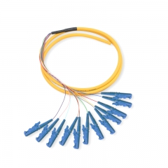 12-fiber E2000/UPC OS2 9/125 Single-mode Bunch Fiber Optic Pigtail
